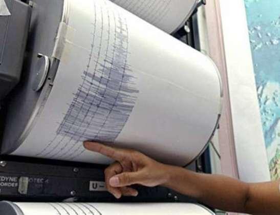 2013604 seismos