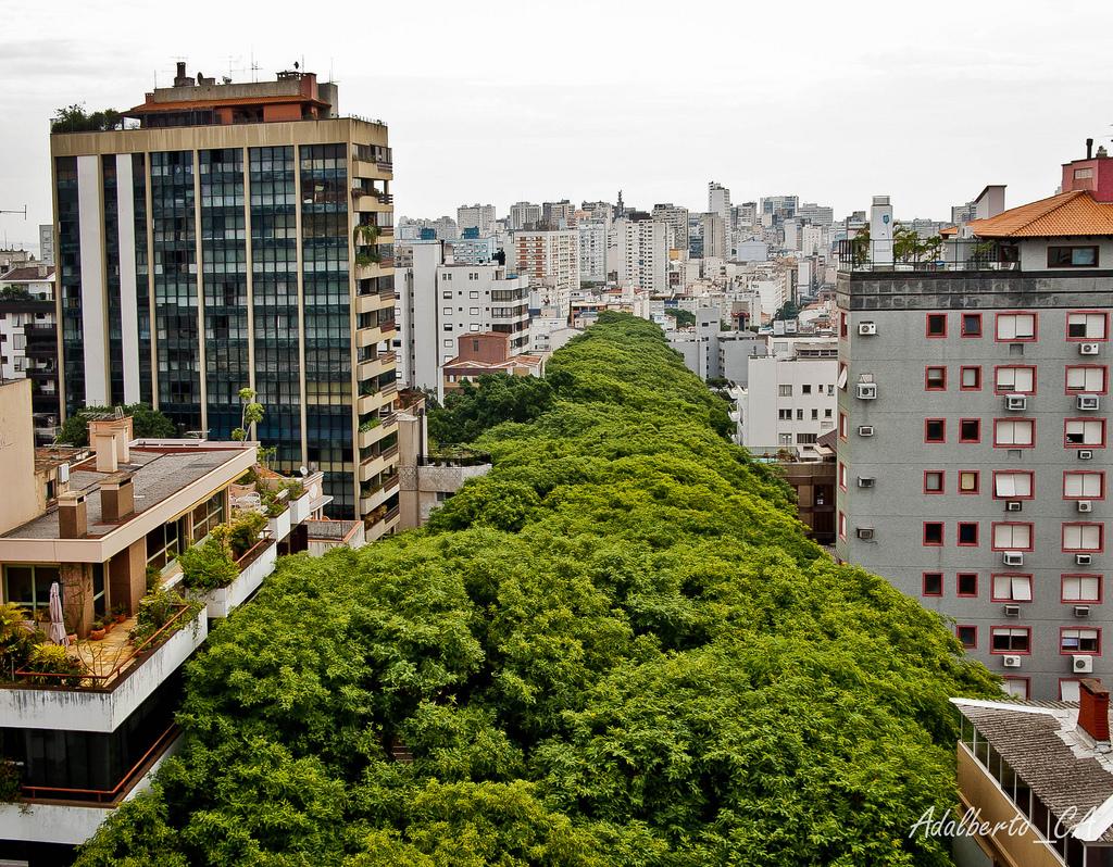 Rua-Goncalo-de-Carvalho-in-the-City-of-Porto-Alegre-Brazil-10
