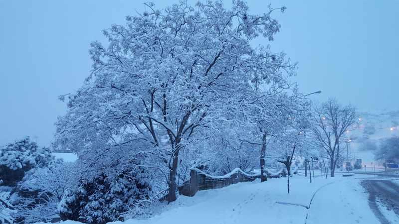 Αποτέλεσμα εικόνας για χιονι παντού
