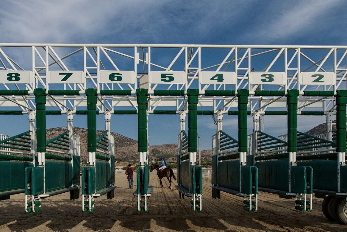 Horse Races 1