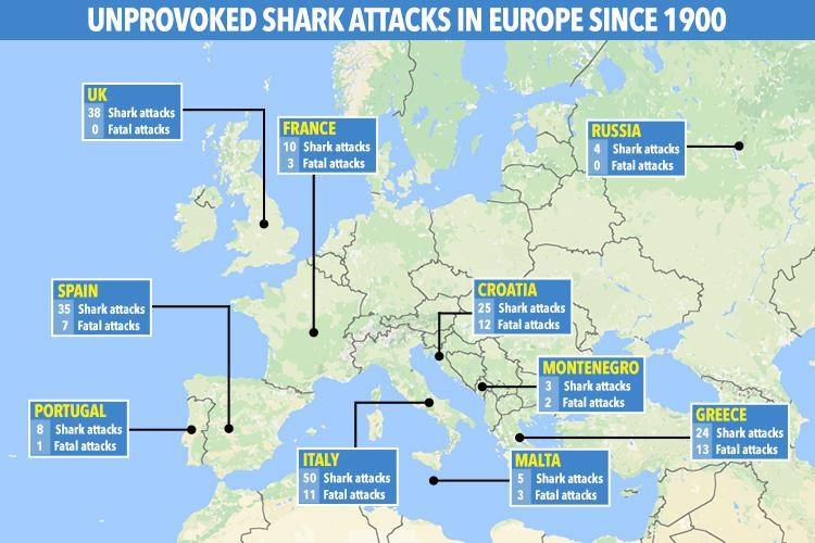 shark attacks europe