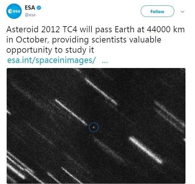 asteroeidis1