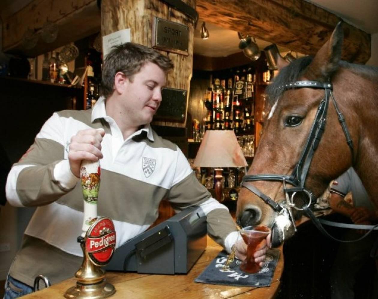 Ένα άλογο μπαίνει σε ένα μπαρ…