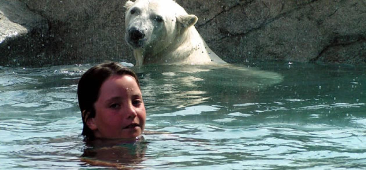 Κολύμπι παρέα με αρκούδες