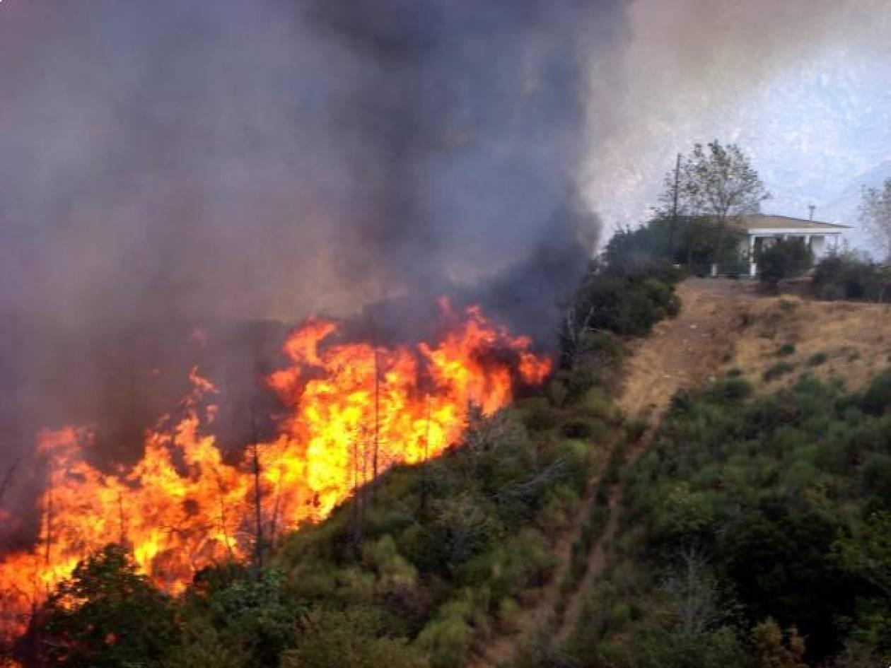 Πυρκαγιά σε εξέλιξη στο Δομοκό!