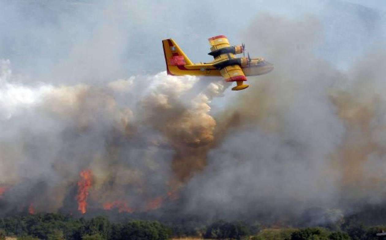 Σε εξέλιξη πυρκαγιά στην Κυπαρισσία