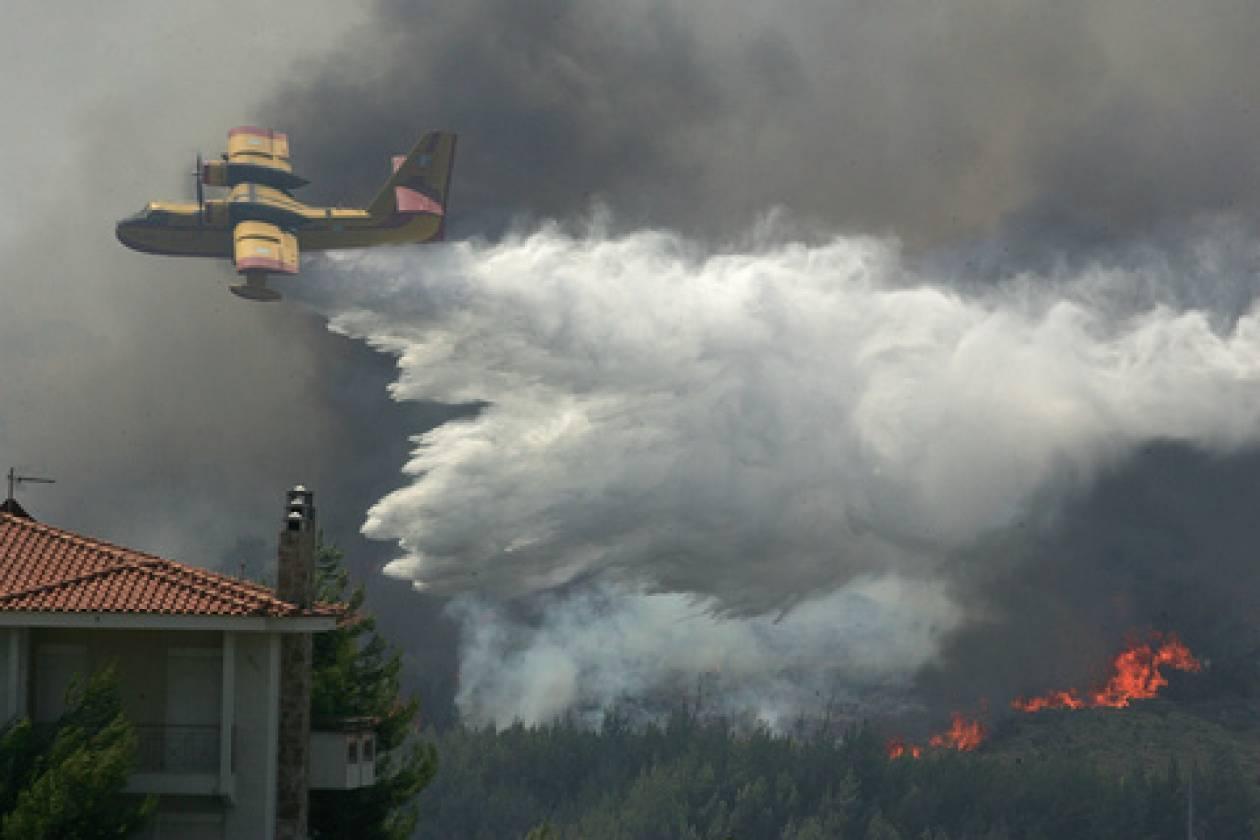 Μεγάλη πυρκαγιά στα Ψαχνά Ευβοίας