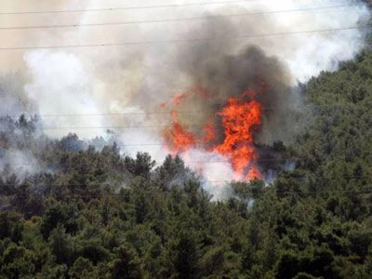Πυρκαγιά στο Νέο Περιβόλι Λάρισας