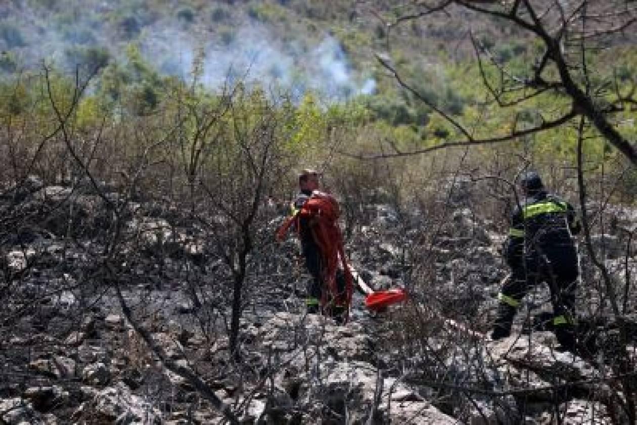 Υπό έλεγχο η πυρκαγιά στο Σέσι Γραμματικού