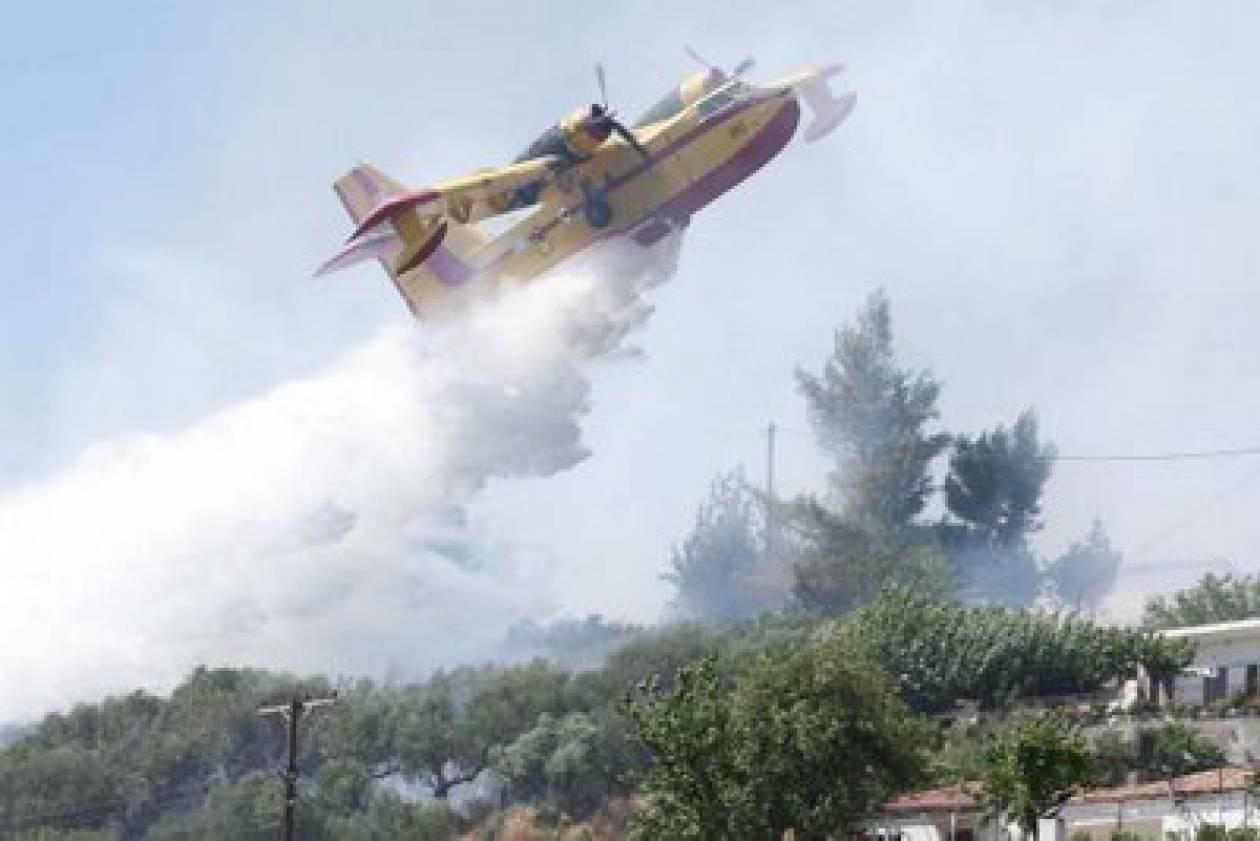 Φωτιές σε Καλαμάτα, Αγρίνιο και Βυτίνα