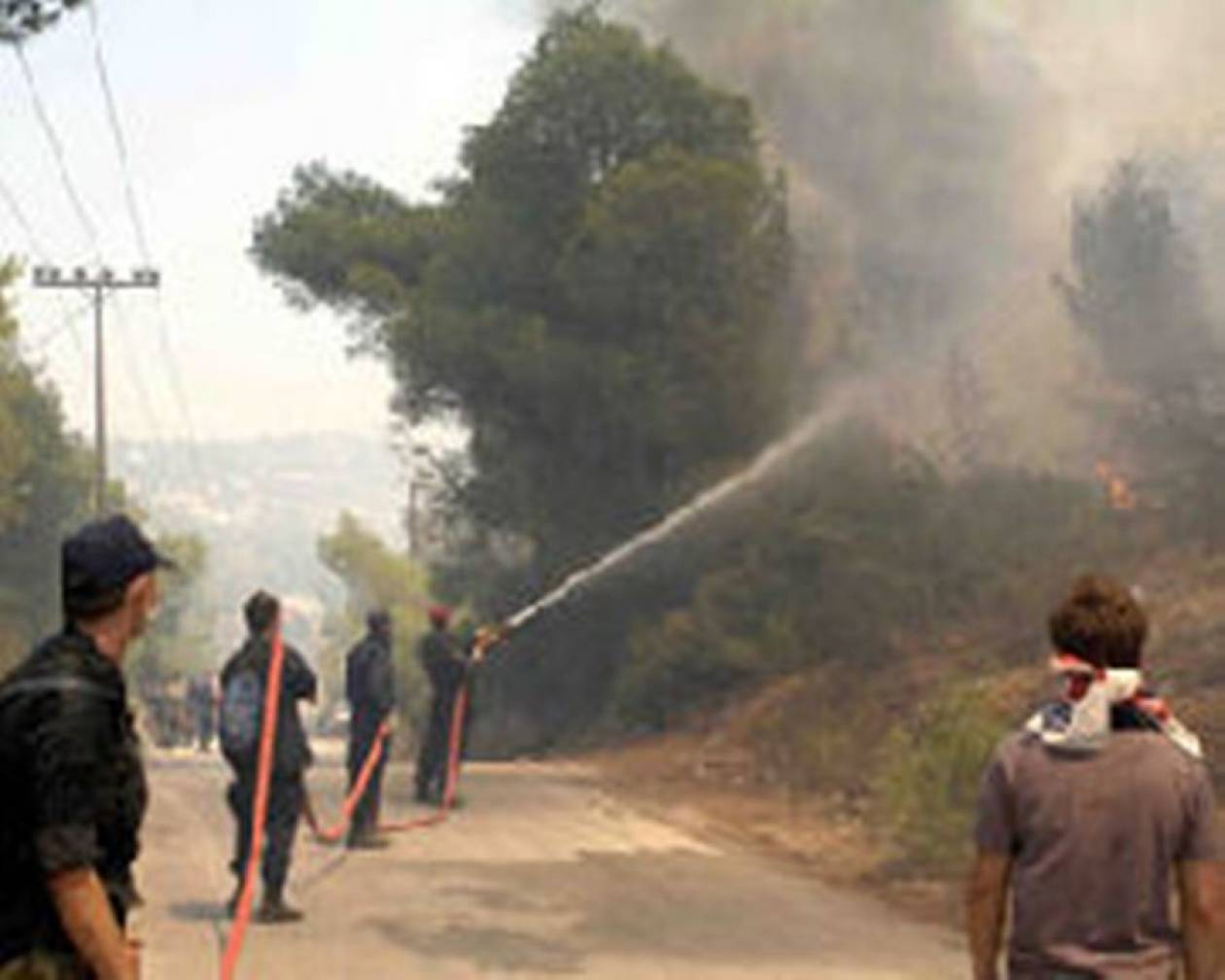 Φωτιά σε δάσος της Λακωνίας