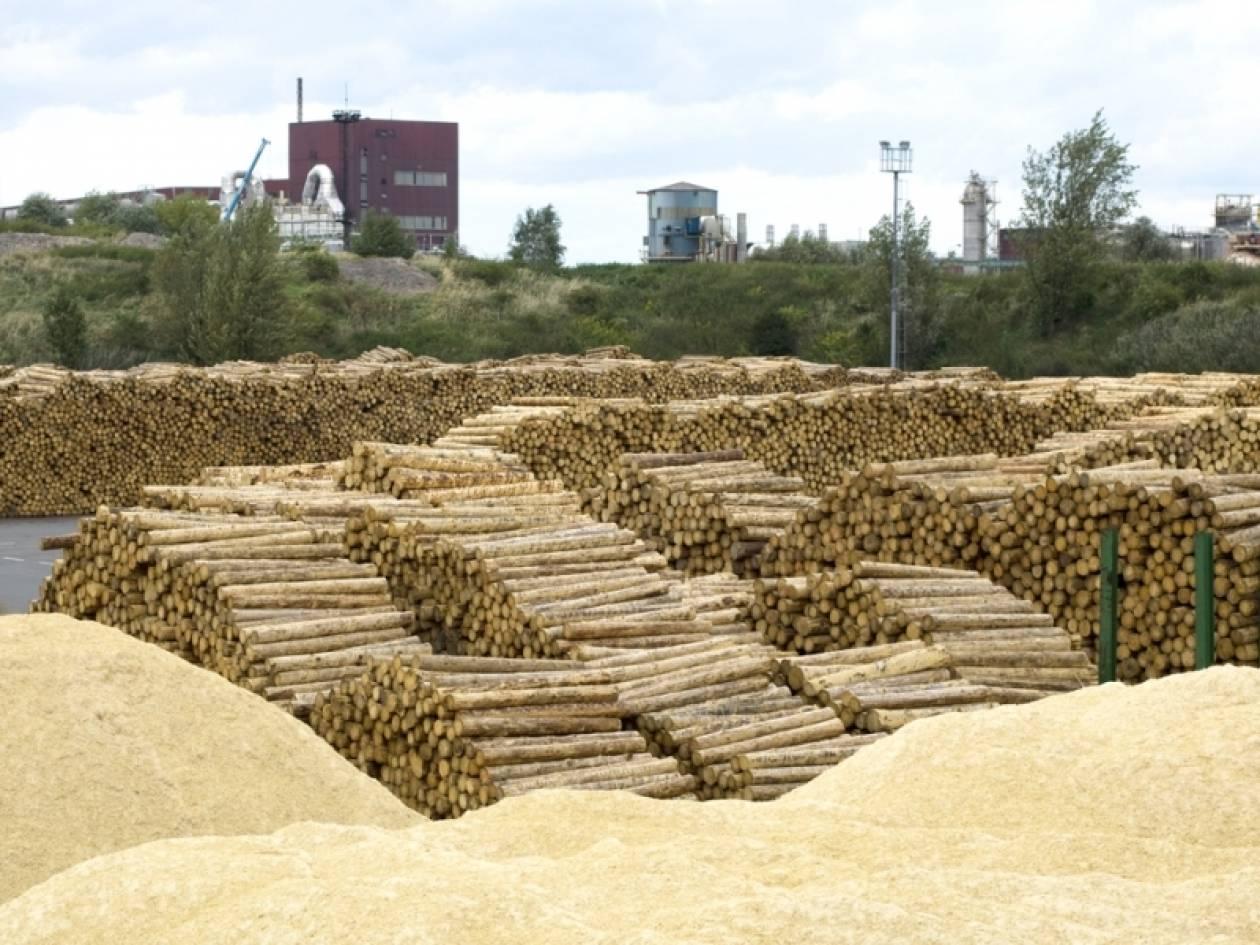 Άρπαξαν τόνους ξύλα από Δασαρχείο στη Λάρισα