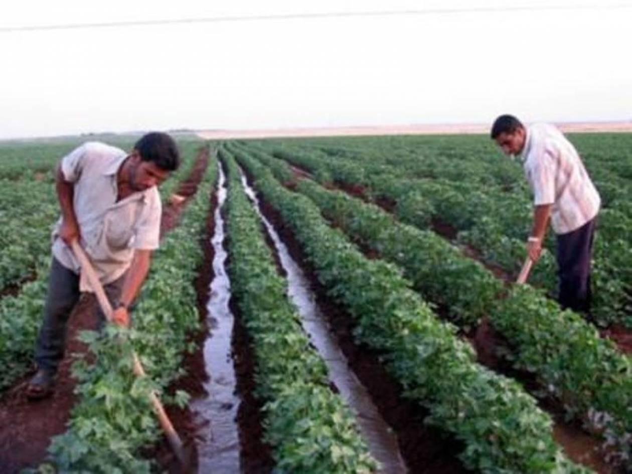 Από Παρασκευή η καταβολή στους αγρότες της Ενιαίας Ενίσχυσης