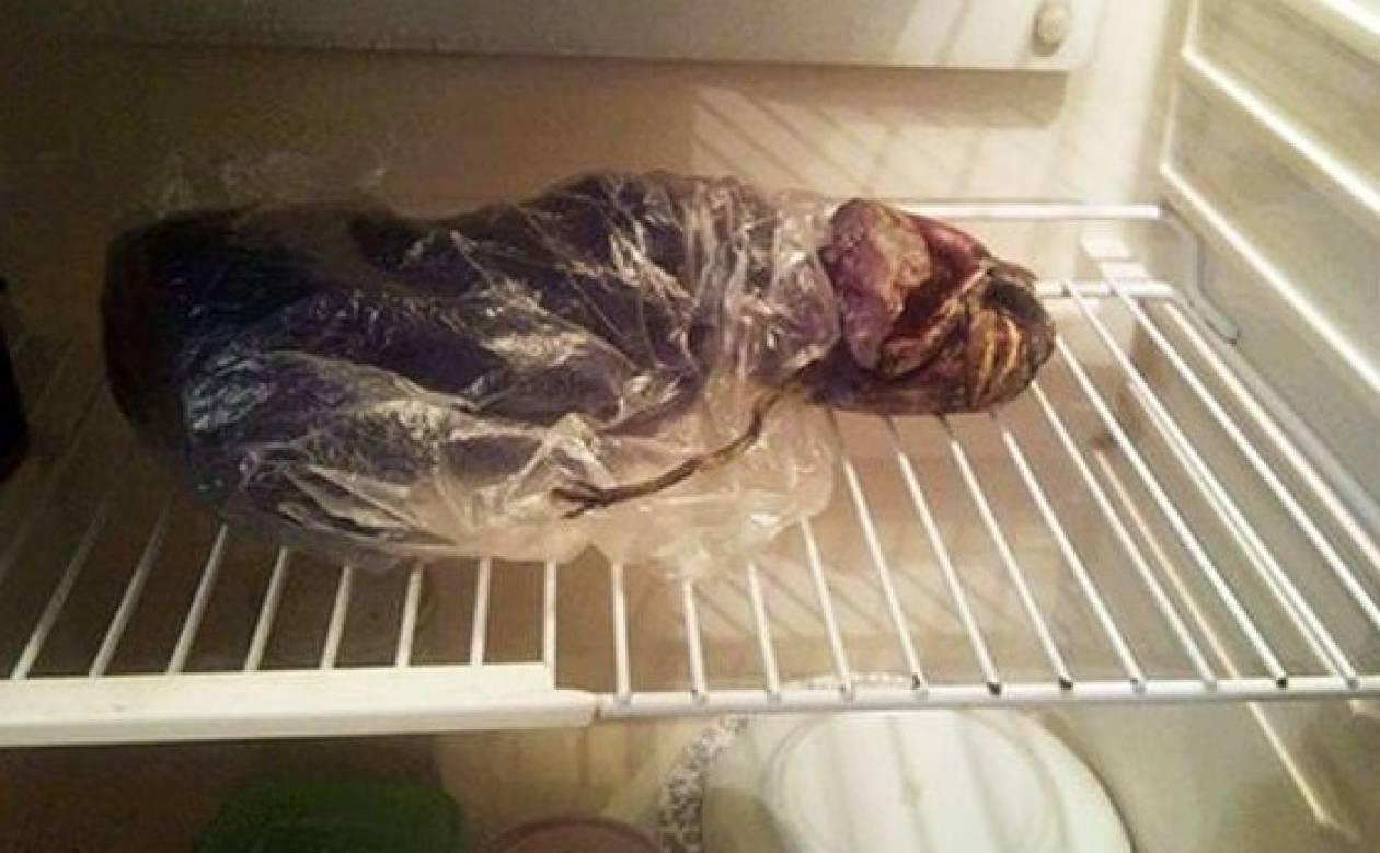 Κρατούσε για δυο χρόνια έναν εξωγήινο στο ψυγείο της!