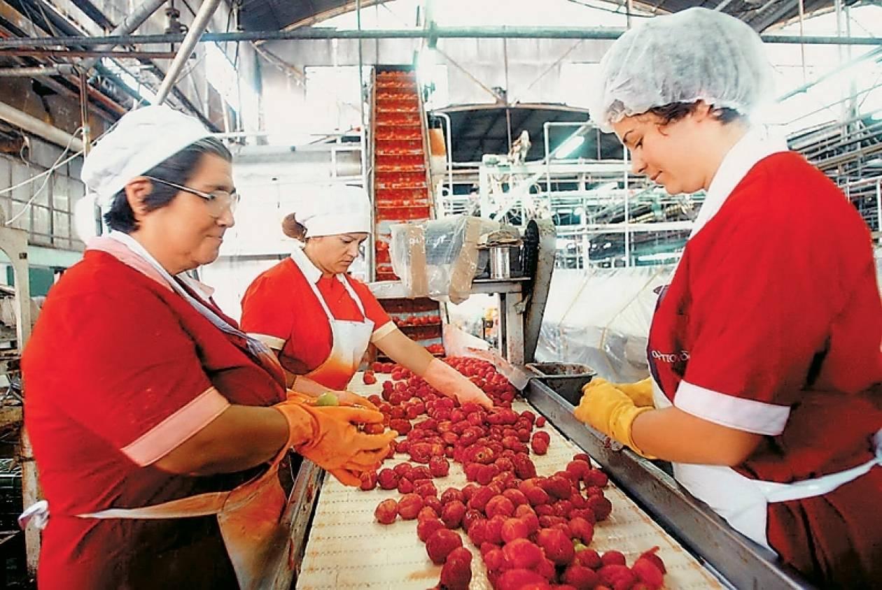 Επενδύσεις  στη μεταποίηση αγροτικών προϊόντων