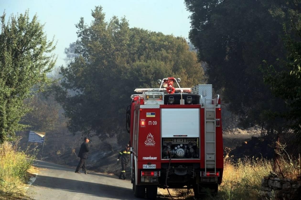 Μαίνεται για τέταρτη ημέρα η φωτιά στις Πρέσπες