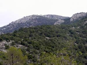 Αναμένεται η απόφαση για την καταπάτηση στην Αιξωνή Γλυφάδας