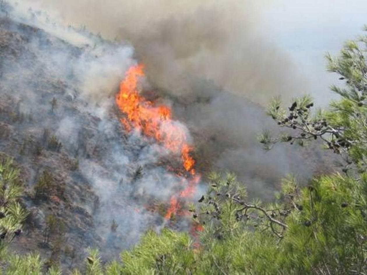 Πυρκαγιά στη Χίο τα ξημερώματα