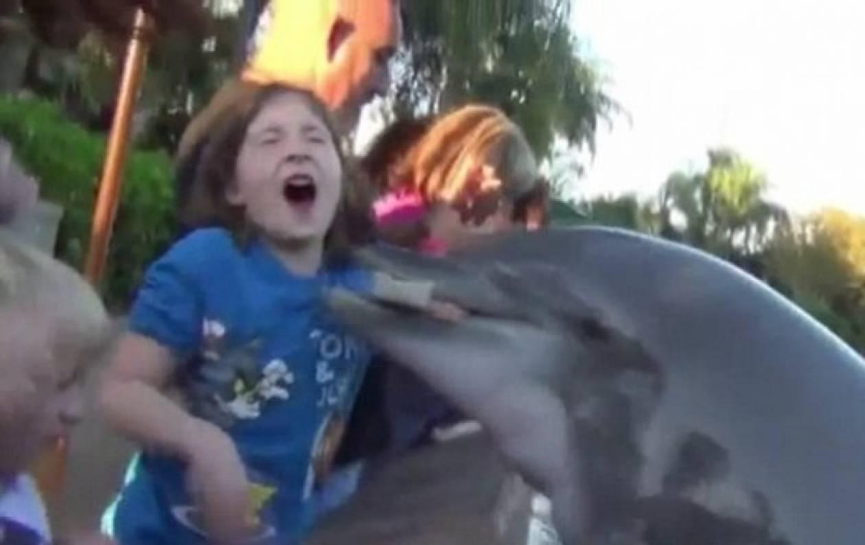 Δελφίνι δάγκωσε το χέρι ενός κοριτσιού! (βίντεο)