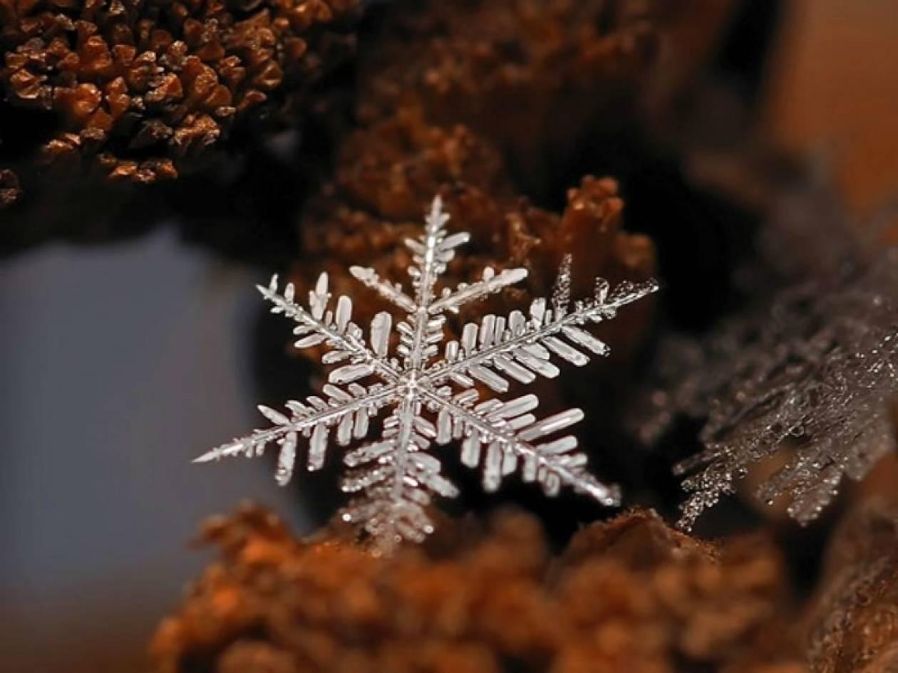 Απίστευτες φωτογραφίες: Νιφάδες χιονιού σε... ζουμ!