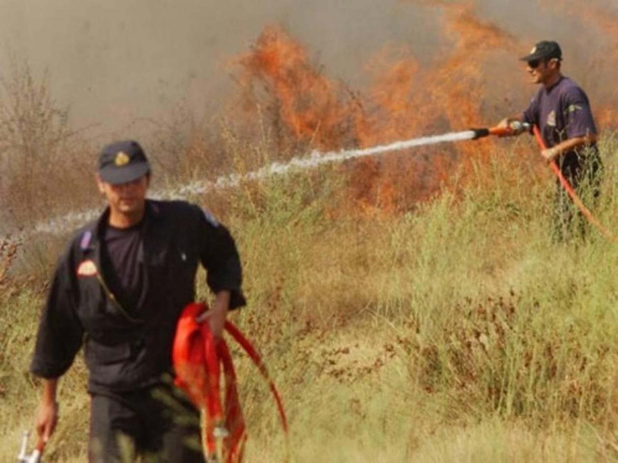 Πυρκαγιές 2007: 190 χρόνια στους εμπρηστές πρότεινε ο Εισαγγελέας