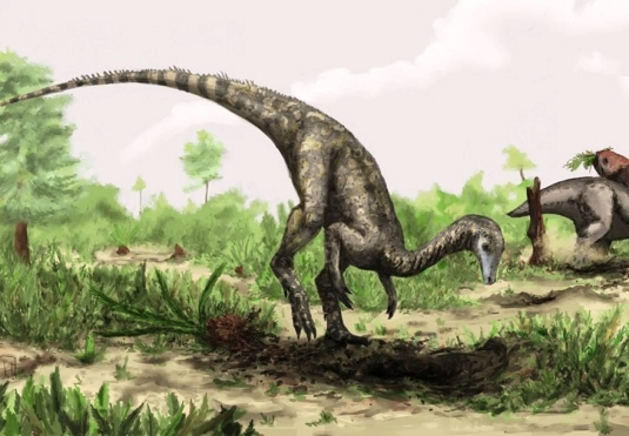 Βρέθηκε ο πιο παλιός δεινόσαυρος που έχει ανακαλυφθεί ποτέ