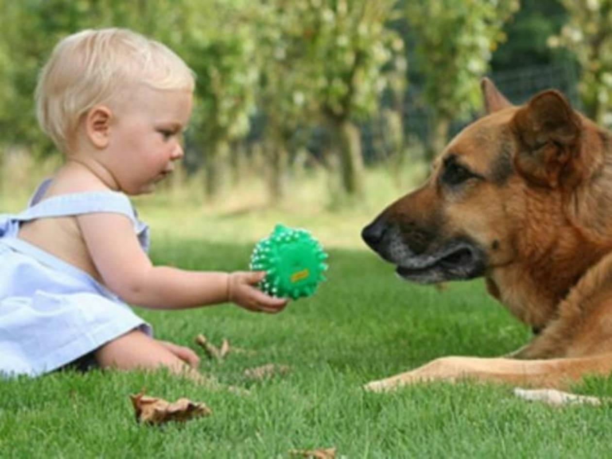 «Σπίθας»: Το σκυλάκι που έκανε τον μικρό Φώτη να ξαναμιλήσει