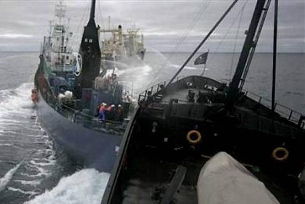 Από ανθρώπινο λάθος η ναυτική τραγωδία στην Ολλανδία