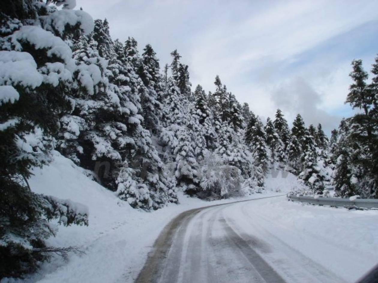 Δείτε την ορεινή Ναυπακτία ντυμένη στα λευκά!( pics)