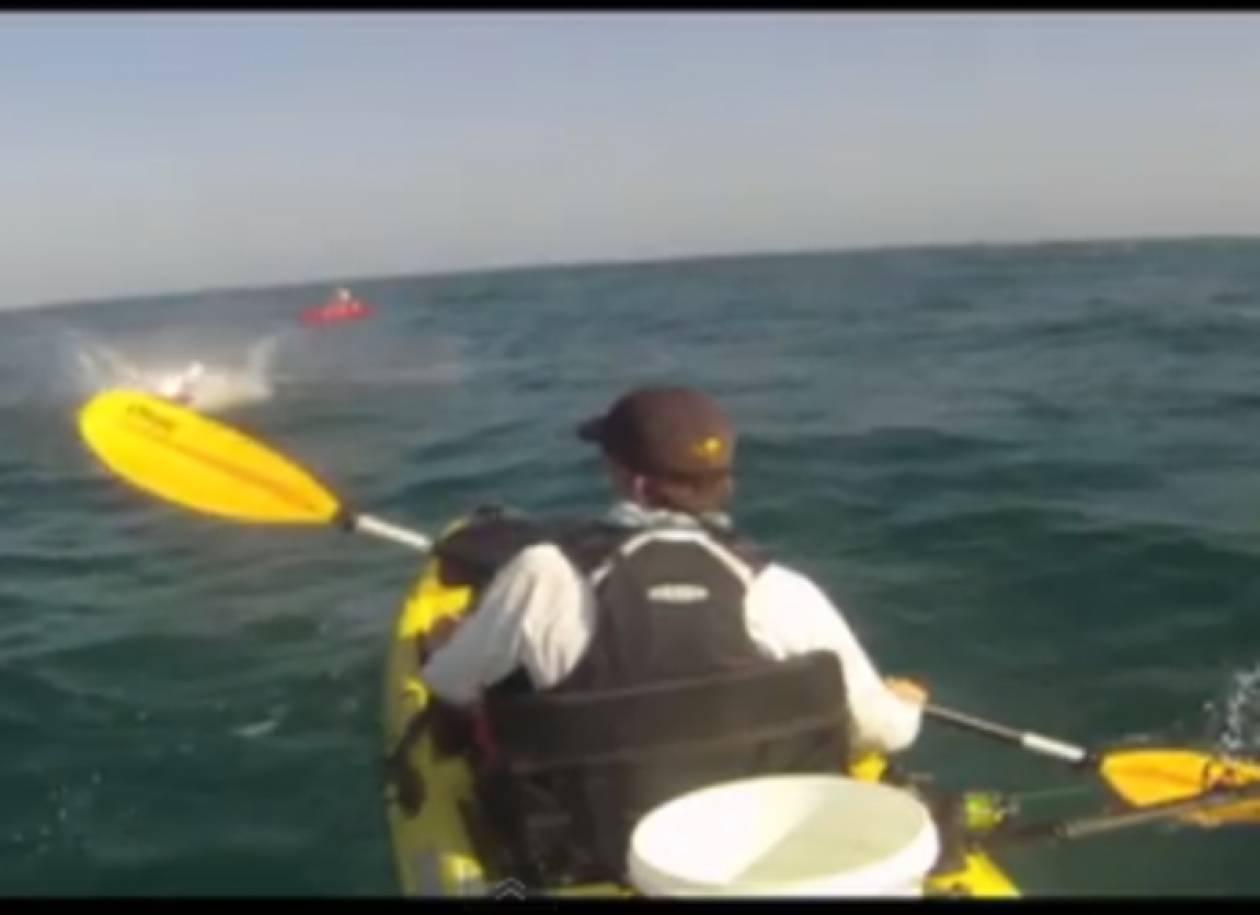 Βίντεο: Ήρθε πρόσωπο με πρόσωπο με... καρχαρία!