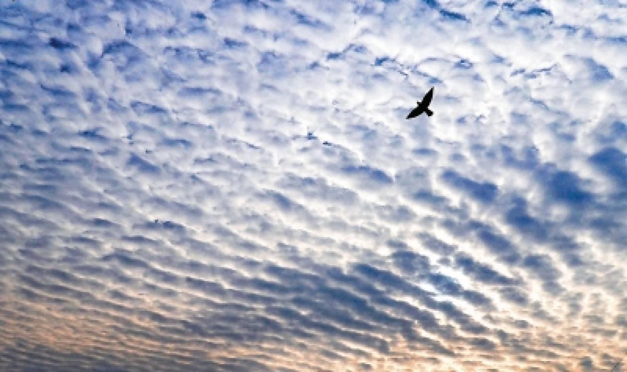 Βίντεο: Χημικοί Αεροψεκασμοί - Σύννεφα του Θανάτου