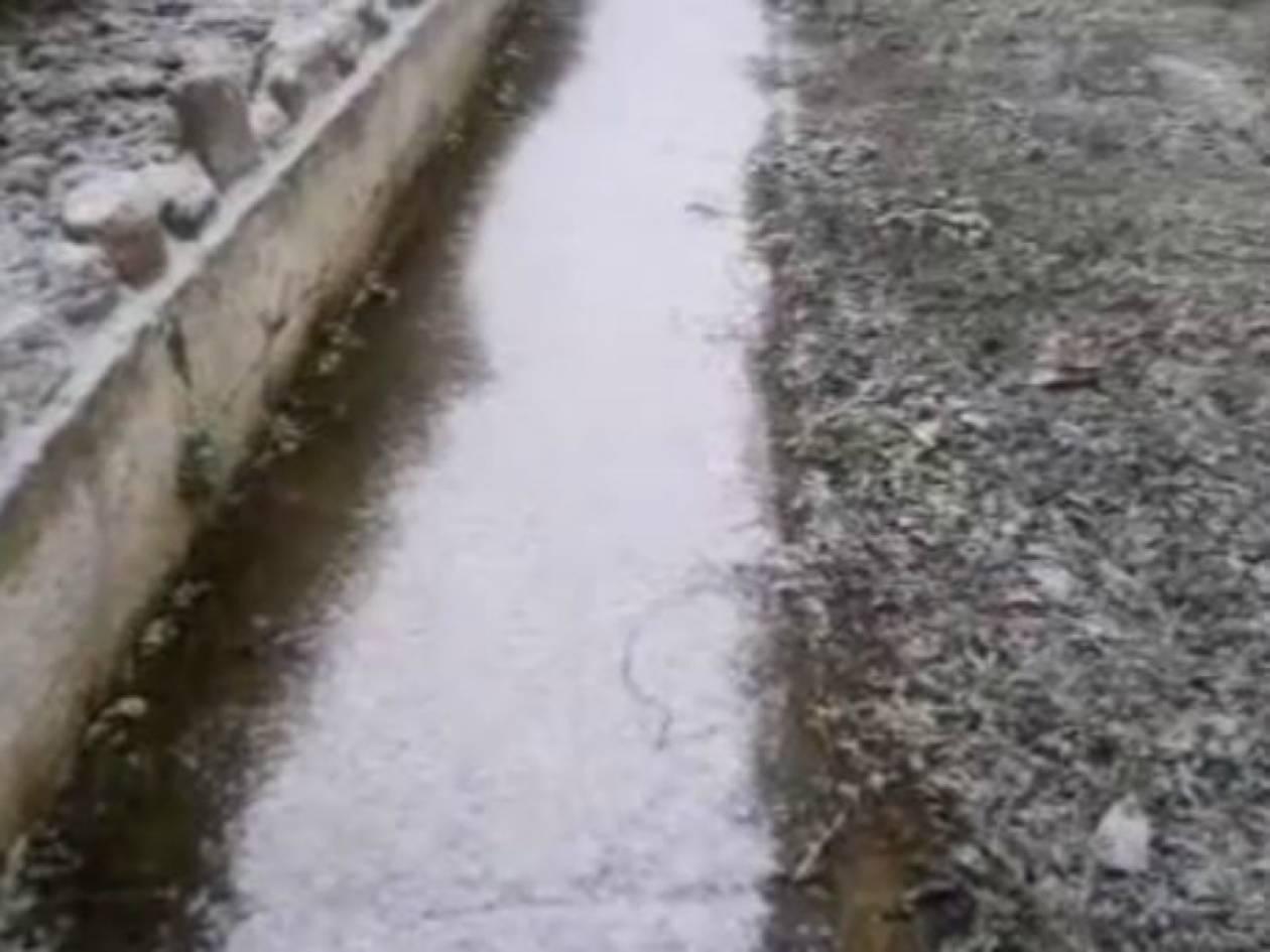 Βίντεο: Χιόνια και στην Ημαθία