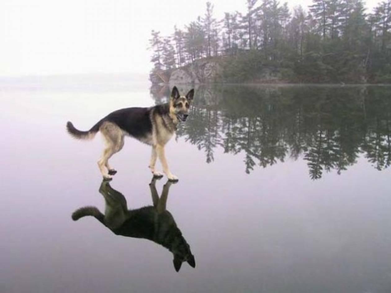 Φωτογραφίες που αψηφούν τους νόμους της φύσης