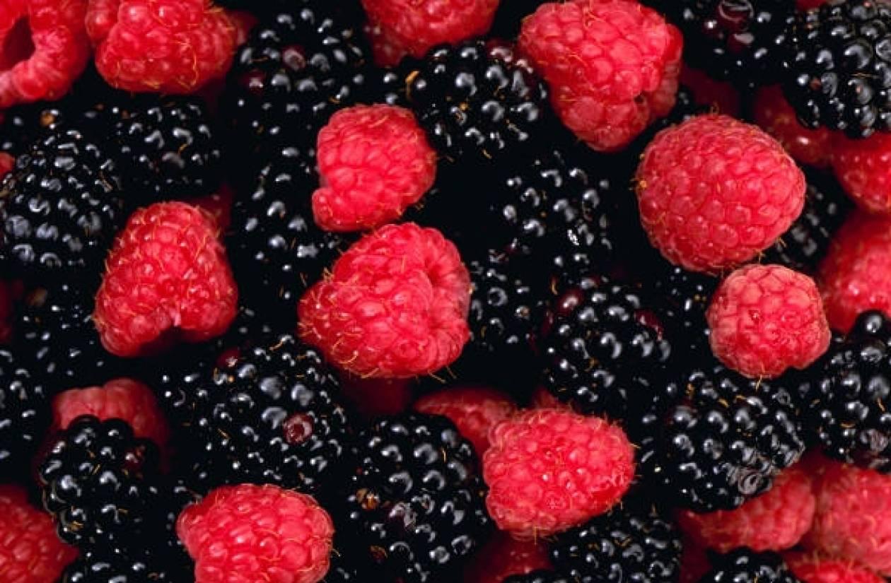Βότανα που προστατεύουν την υγεία μας