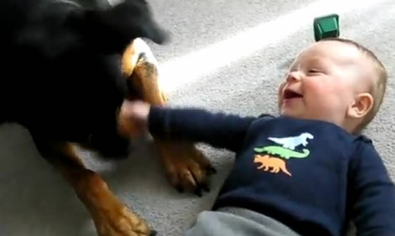 Απίστευτο: Ροντβάιλερ και μωρό παίζουν παρέα!