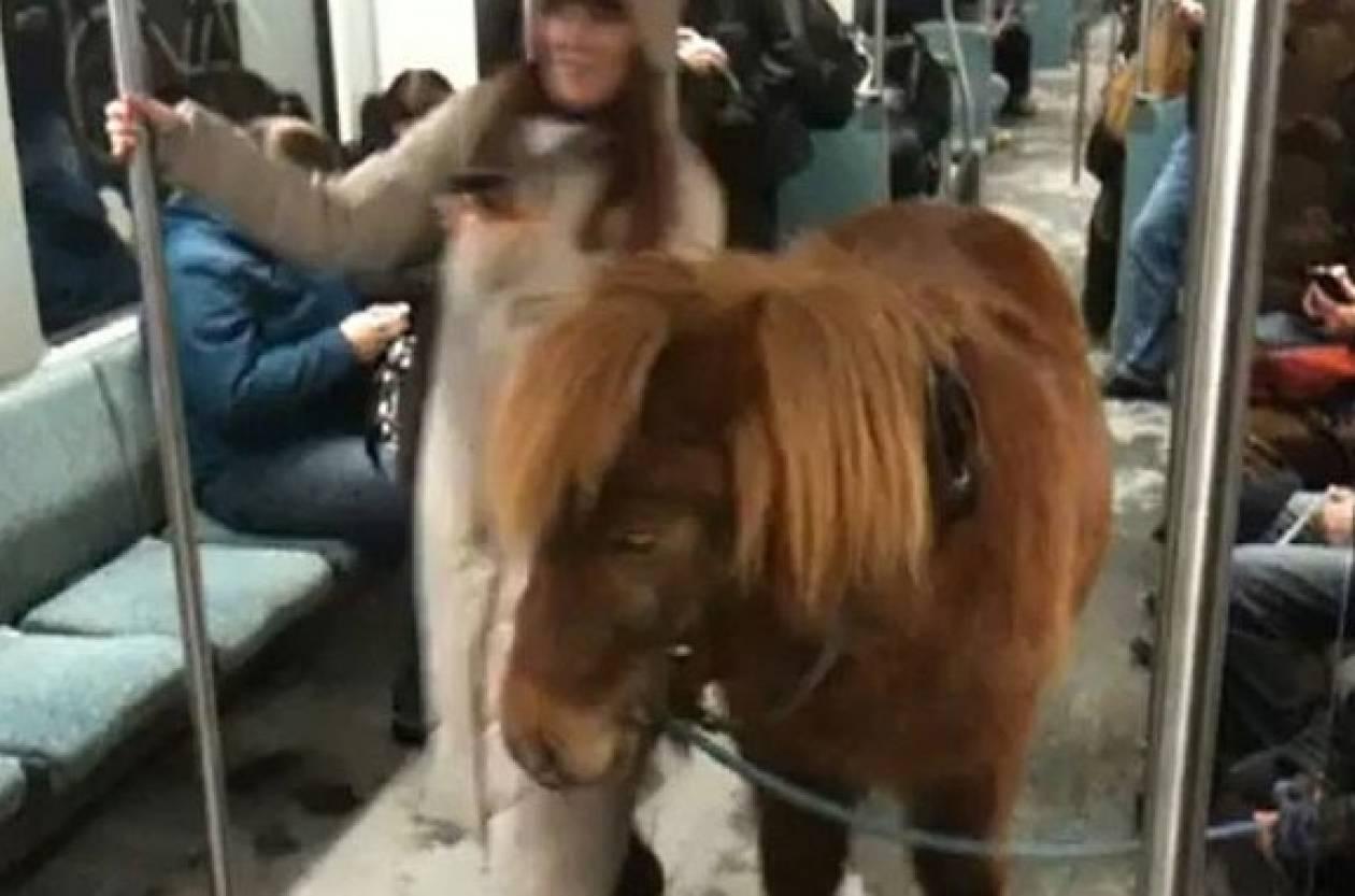 Απίστευτο: Πήρε το πόνυ μαζί της στο μετρό (βίντεο)