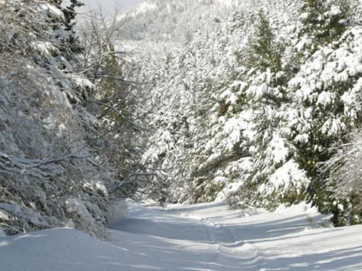 Επιδείνωση του καιρού - Δείτε πού θα χιονίσει