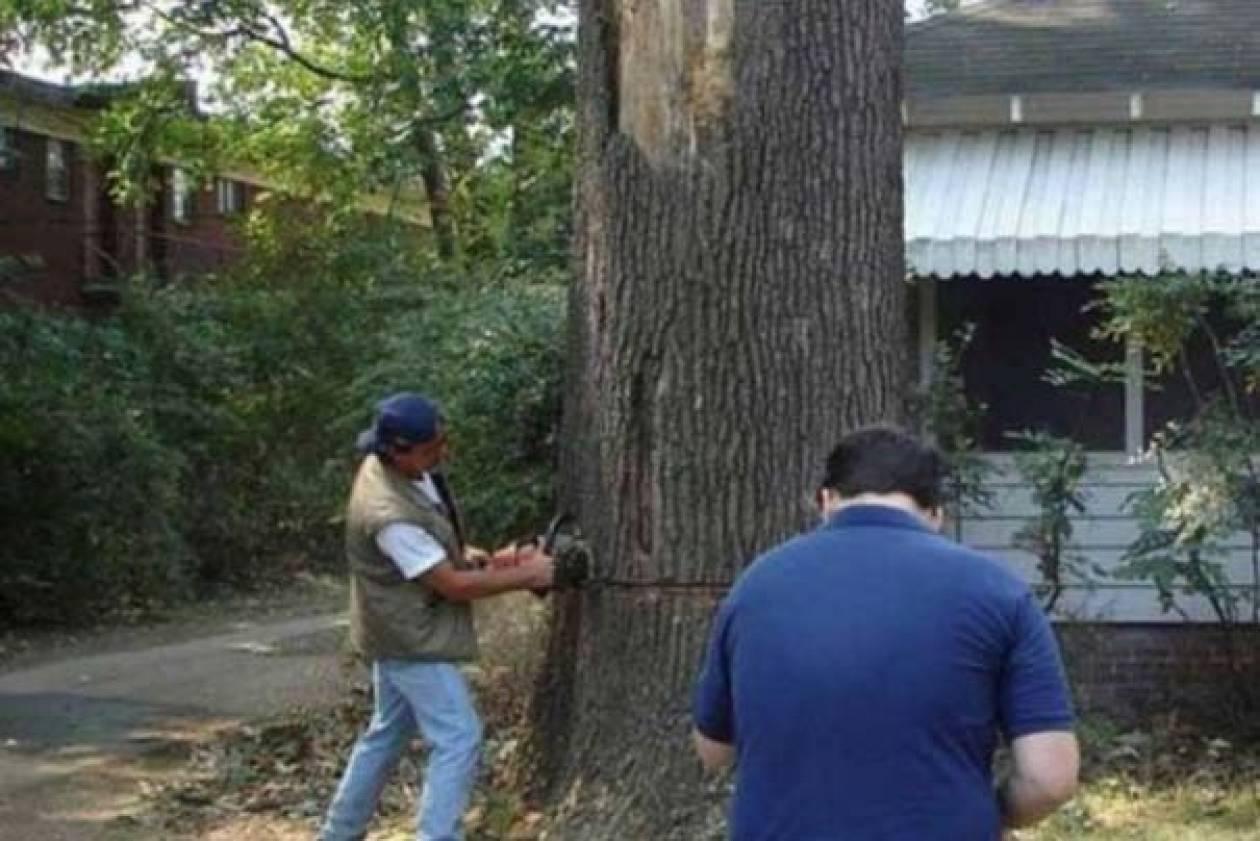 Ξεκαρδιστικό FAIL: Ένα δέντρο, ένα πριόνι και δυο άνδρες χωρίς μυαλό