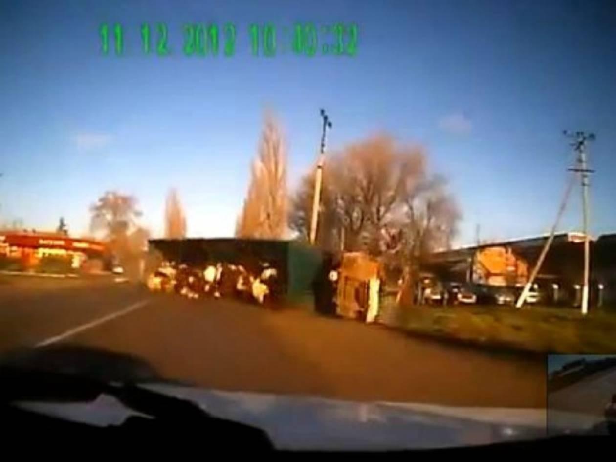 Βίντεο: Φορτηγό που μεταφέρει αγελάδες ντελαπάρει on camera
