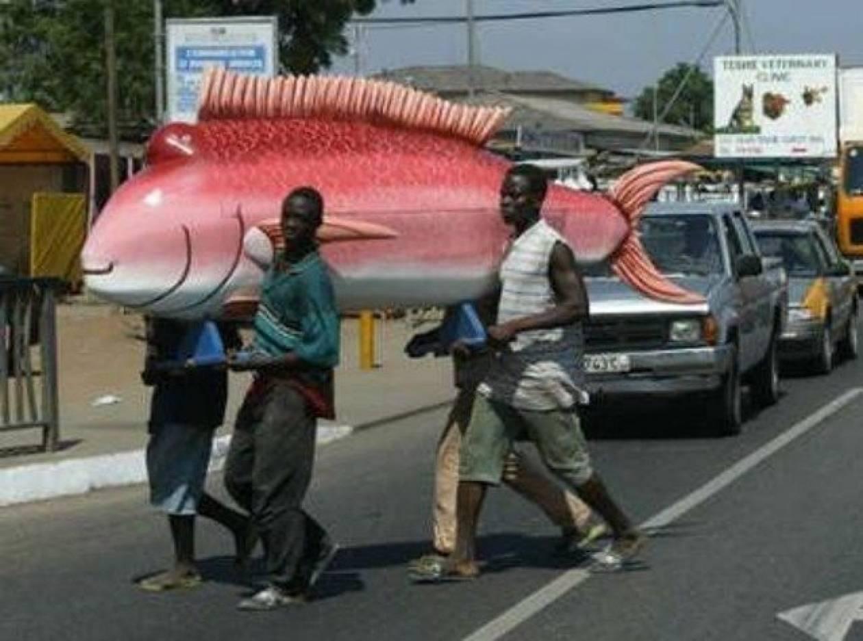 Απίστευτο: Φτιάχνουν φέρετρα σε σχήμα ψαριών και όχι μόνο...