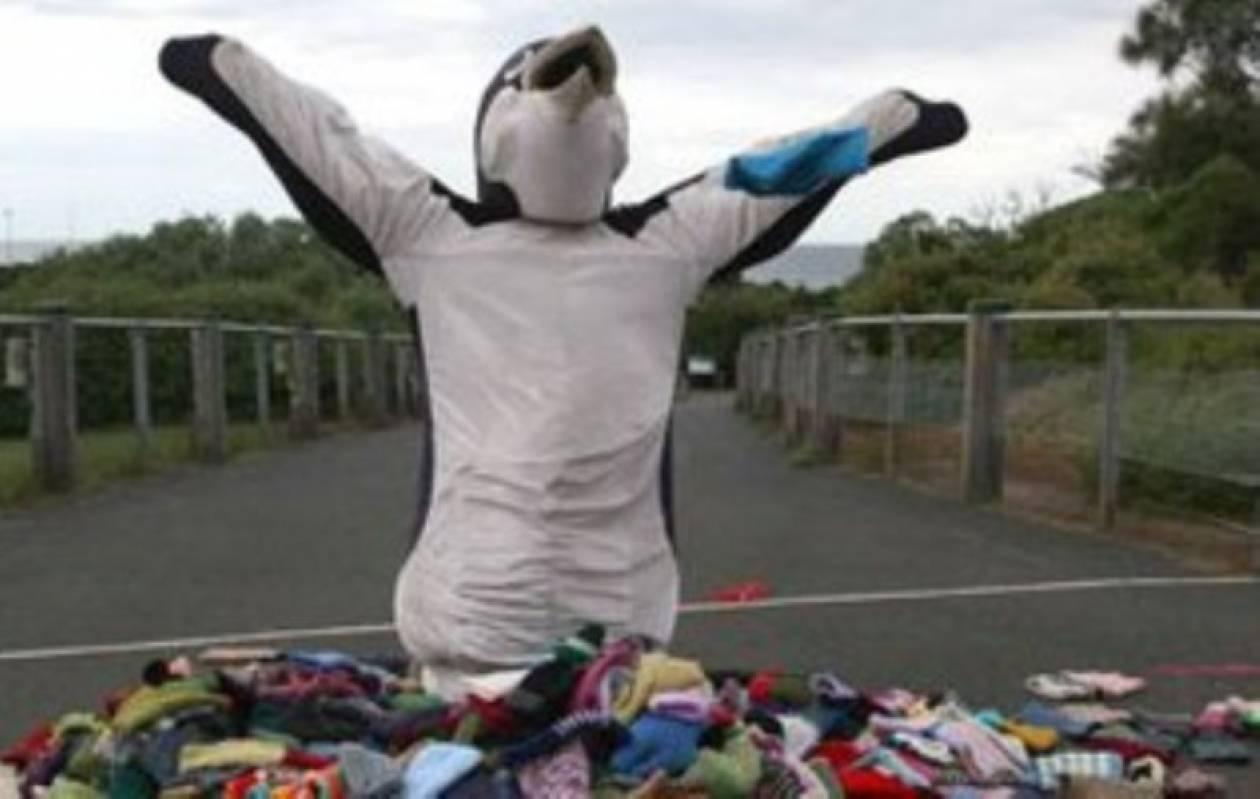 'Εντυσαν με πουλόβερ 32.000 πιγκουίνους!
