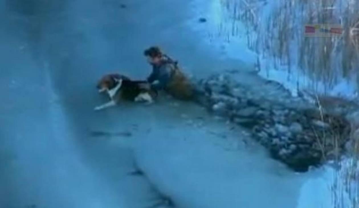 ΒΙΝΤΕΟ: Δείτε πως διεσώθη ο σκύλος!