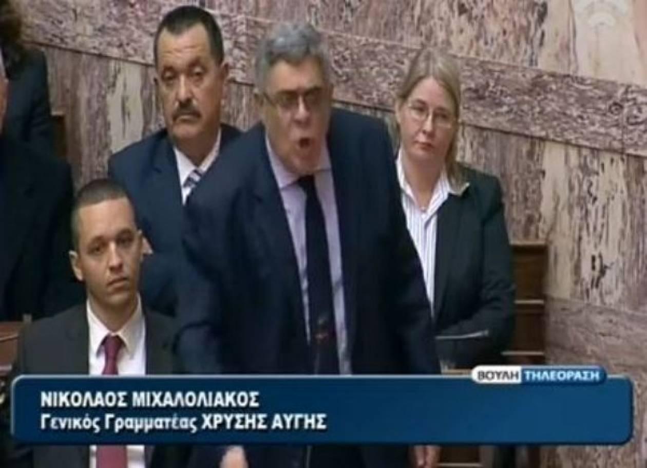 Βίντεο: Ν. Μιχαλολιάκος - Όχι στην εκχώρηση εθνικής κυριαρχίας!