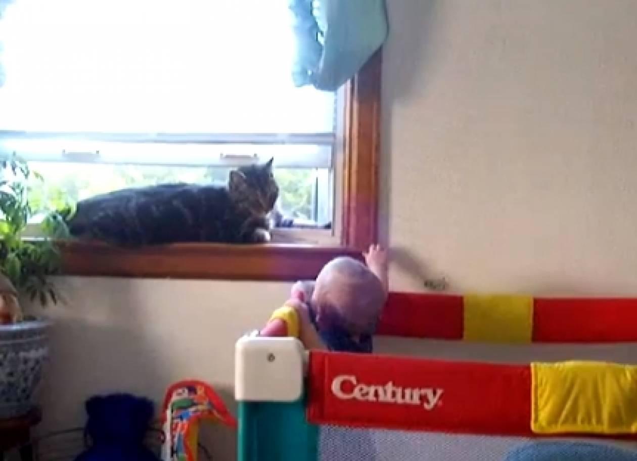 Βίντεο: Δείτε το φοβερό παιχνίδι μίας γάτας κι ενός μωρού