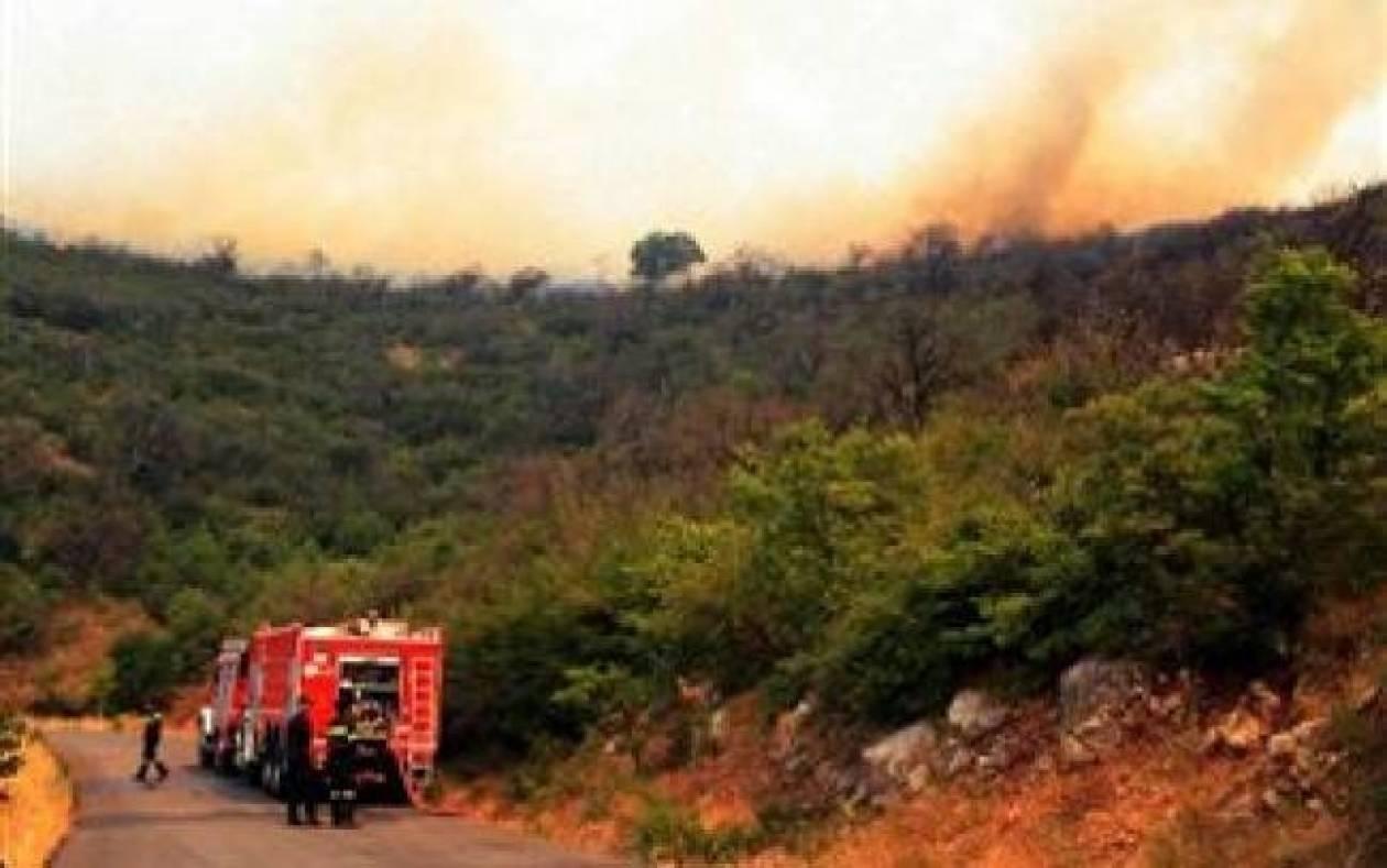 Μυτιλήνη: Τρεις φωτιές μέσα σε λίγες ώρες