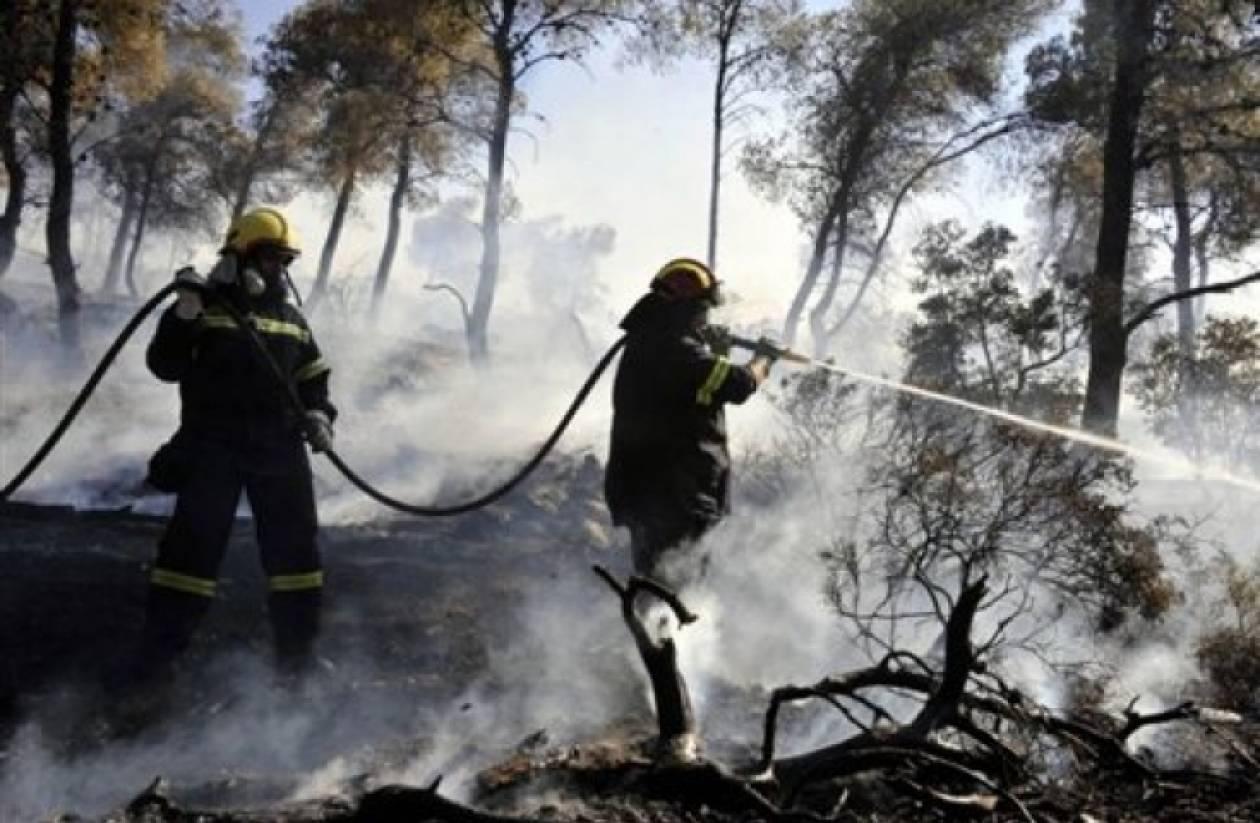 Ηράκλειο: Υπό έλεγχο η φωτιά στη Μεσαρά