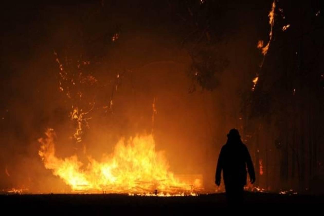 Φλέγεται η Αυστραλία-Οι φωτιές μπορεί να κρατήσουν εβδομάδες