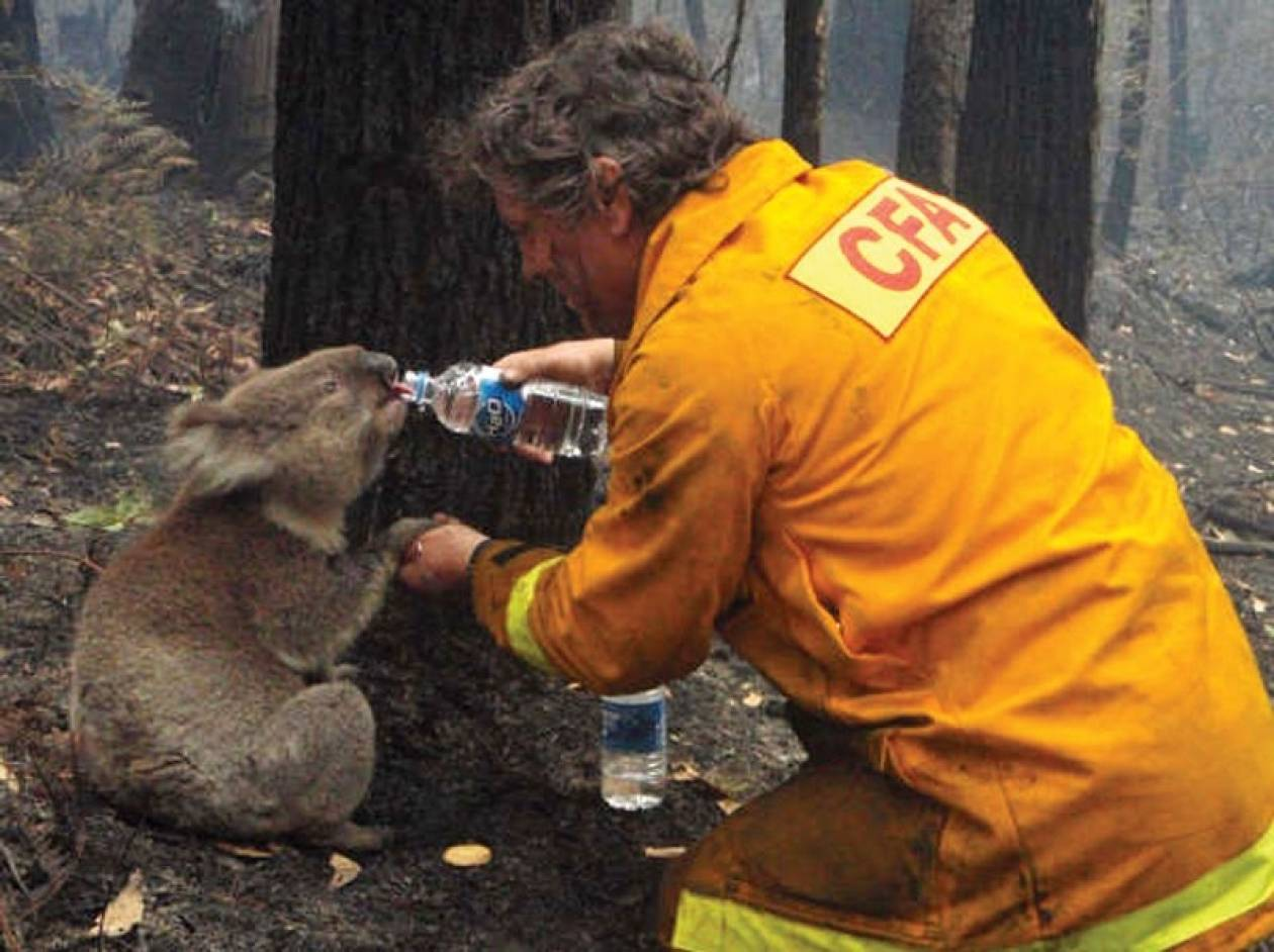 Αυστραλία: Μαίνονται οι δεκάδες πυρκαγιές