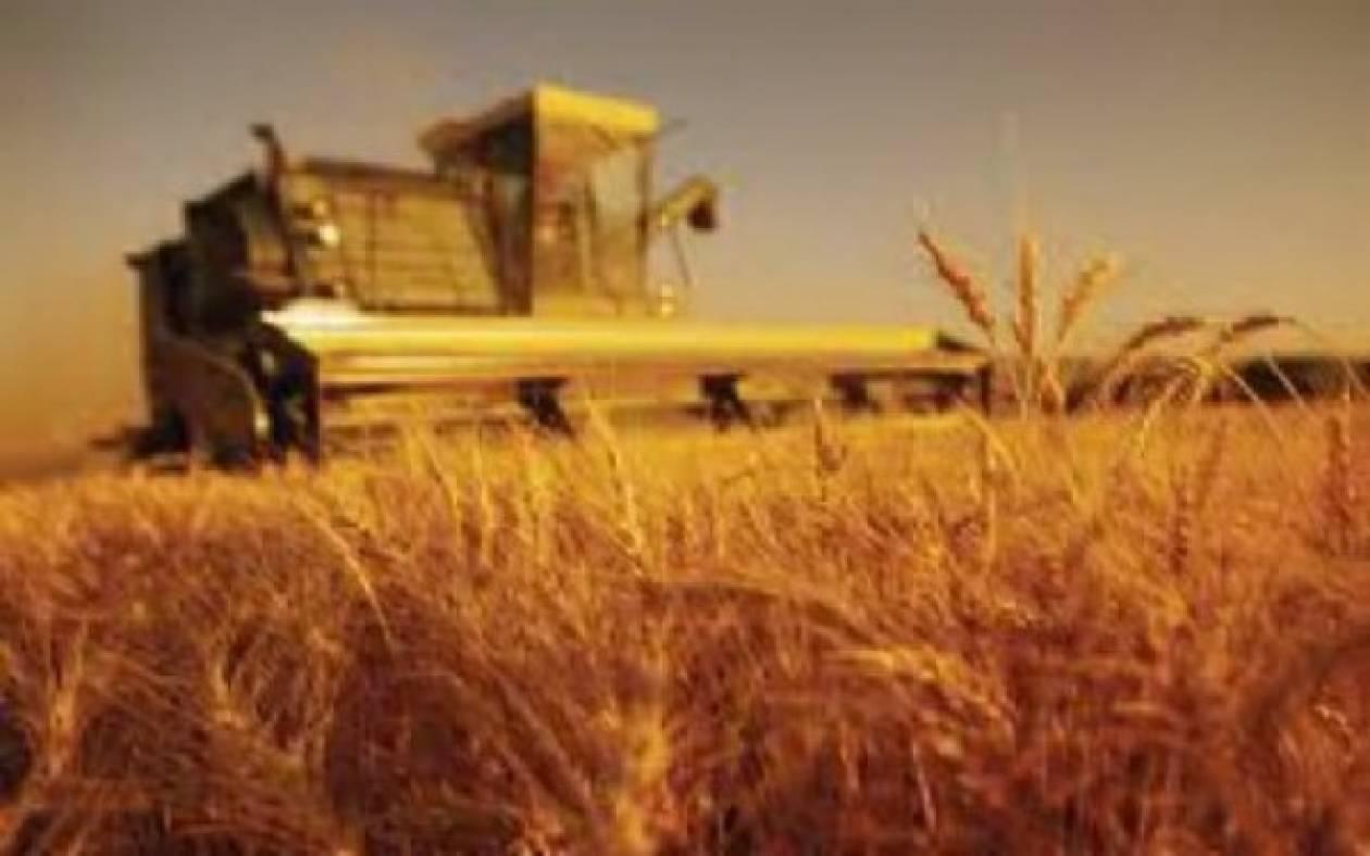 «Πράσινο φως» σε 717 σχέδια βελτίωσης έδωσε το υπ. Αγροτικής Ανάπτυξης
