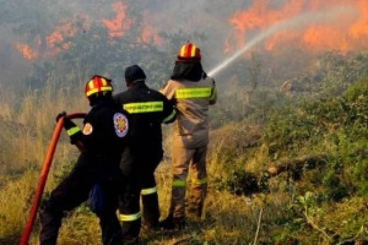 Φωτιά στο Αχλαδοχώρι Τρικάλων